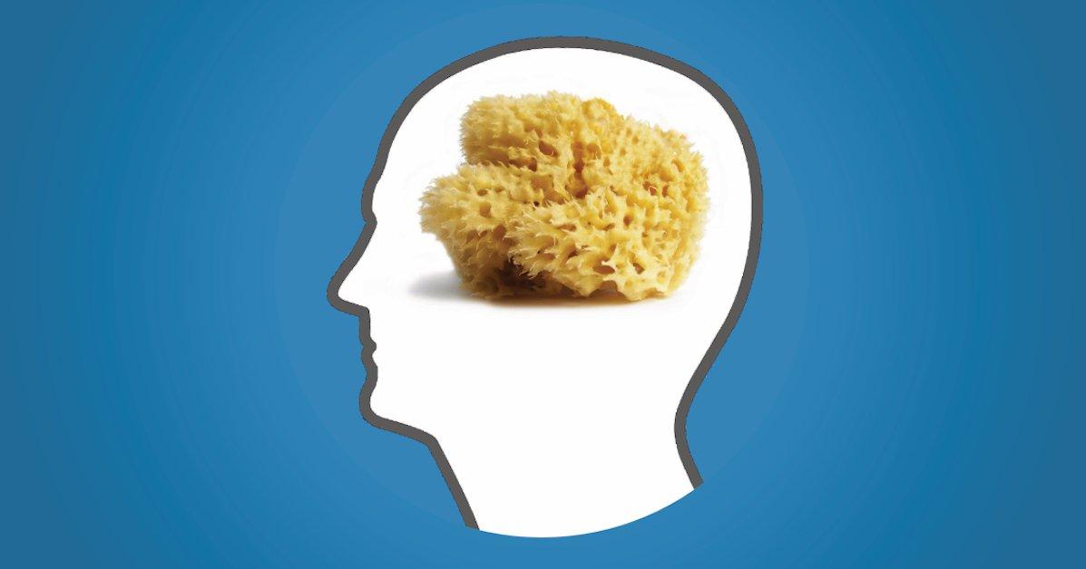 tips voor een productief brein